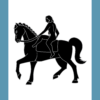 Coventry Flag: a naked woman on a horse, black on a white panel; light blue panels to left and right