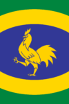 Penkhull Flag: a yellow cockerel on sky blue with a yellow oval; placed on a yellow saltire on a green field