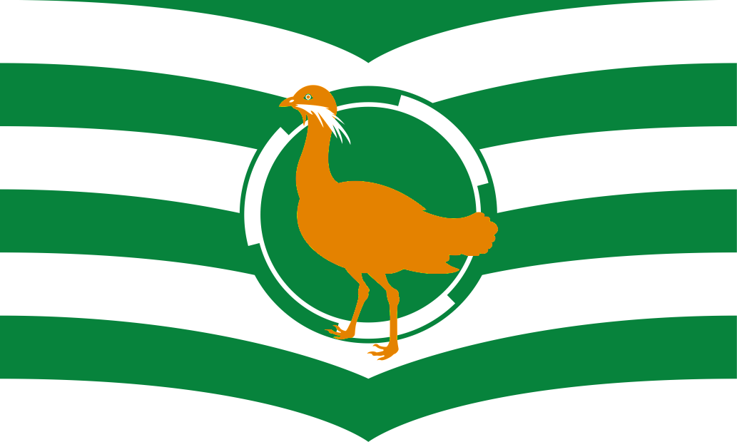 Wiltshire Flag Day (County Day)